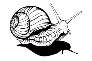 20.21_Logo_Wunschkonzert.jpg